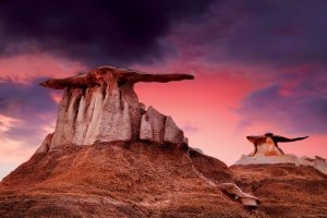 Bisti Wilderness Adventure